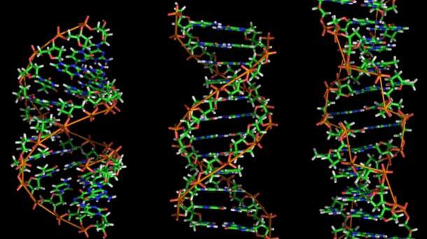 DNA_foto610x342