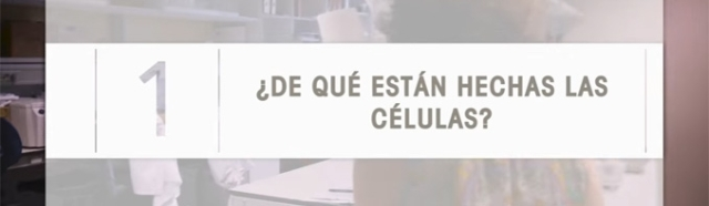 celulas-serie